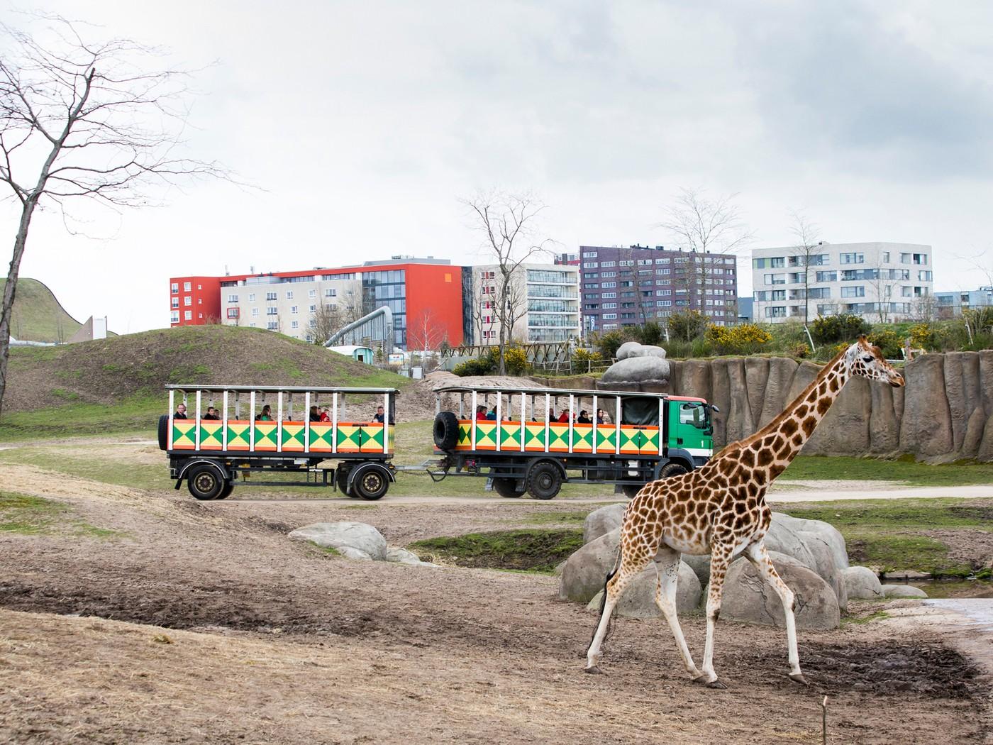 www.groene.nl